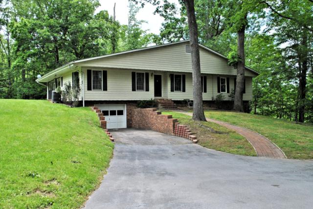 4035 Chestnut Ridge Rd, Pulaski, VA 24301 (MLS #861827) :: Five Doors Real Estate