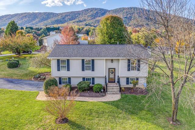15 Gala Cir, Roanoke, VA 24019 (MLS #864548) :: Five Doors Real Estate