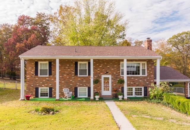 456 Ingal Blvd, Salem, VA 24153 (MLS #864677) :: Five Doors Real Estate