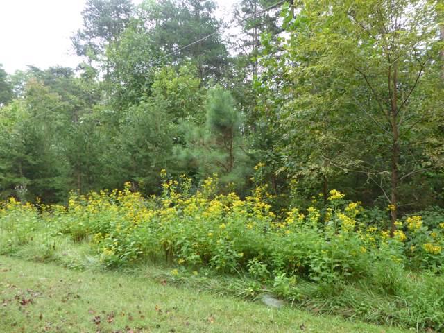 0 Deerpath Dr, Hardy, VA 24101 (MLS #865411) :: Five Doors Real Estate