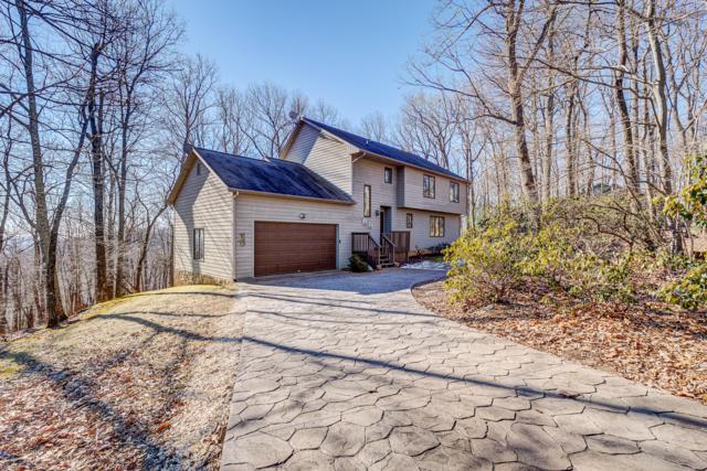 411 Windridge Pkwy, Hardy, VA 24101 (MLS #855314) :: Five Doors Real Estate