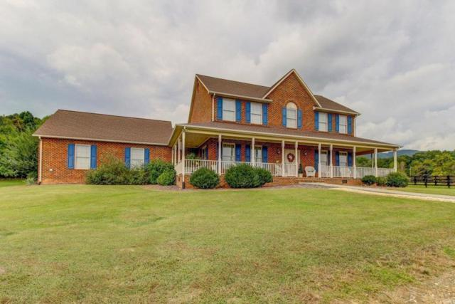 1051 Lonesome Pine Dr, Blue Ridge, VA 24064 (MLS #856892) :: Five Doors Real Estate