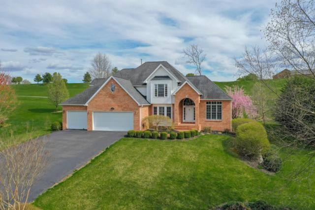 460 Scarlet Dr, Daleville, VA 24083 (MLS #858920) :: Five Doors Real Estate