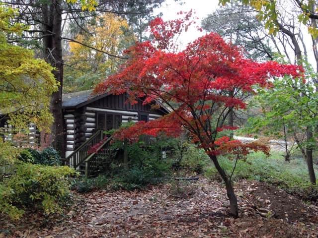 2813 Franklin St, Salem, VA 24153 (MLS #864755) :: Five Doors Real Estate