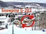 G-202 Snowpine Village - Photo 1