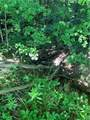 0 Hayes Hollow Road - Photo 21
