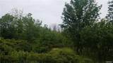 VL Upper Mountain Road - Photo 3