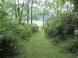 1520 Cranberry Pond Trail - Photo 11