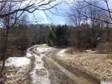8527 Sawmill Run Road - Photo 42