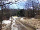 8527 Sawmill Run Road - Photo 46