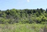 70 acres Cleveland Road - Photo 3