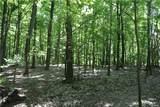 70 acres Cleveland Road - Photo 4