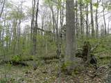 0 Mill Stream Road - Photo 21