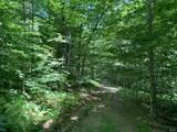 00 Upper Birch Run Road - Photo 1