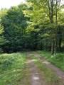 15 Tamblin Ridge - Photo 5