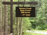 10594 Balsam Creek Road - Photo 24