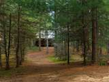 7310 Mossy Pines Lane - Photo 7