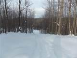 934 Oswegatchie Trail Road - Photo 13