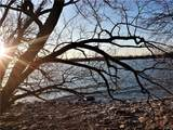 62 Fuller Bay Drive - Photo 3