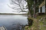 40269 Maple Tree Drive - Photo 6