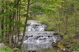 2686 Mill St - Photo 3