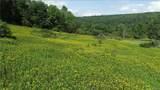 27 acres Blower Road - Photo 10