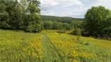 27 acres Blower Road - Photo 11