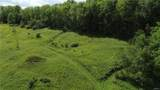 27 acres Blower Road - Photo 5