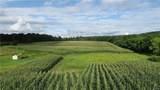 35 acres Meadow Drive - Photo 4