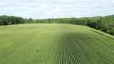 35 acres Meadow Drive - Photo 7