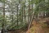 40269 Maple Tree Drive - Photo 12
