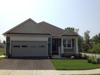 7 Cherryfield Lane, Lancaster, NY 14086 (MLS #B1033380) :: BridgeView Real Estate Services