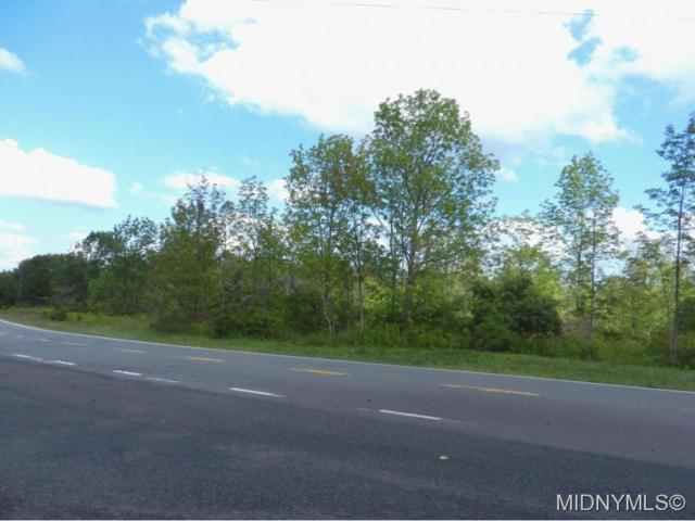 0 Survey Lot 10 Paines Hollow Road, Little Falls-Town, NY 13365 (MLS #1503975) :: Updegraff Group