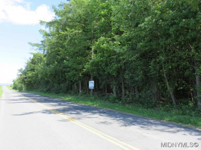0 Valley View Road, Westmoreland, NY 13490 (MLS #1603373) :: Thousand Islands Realty