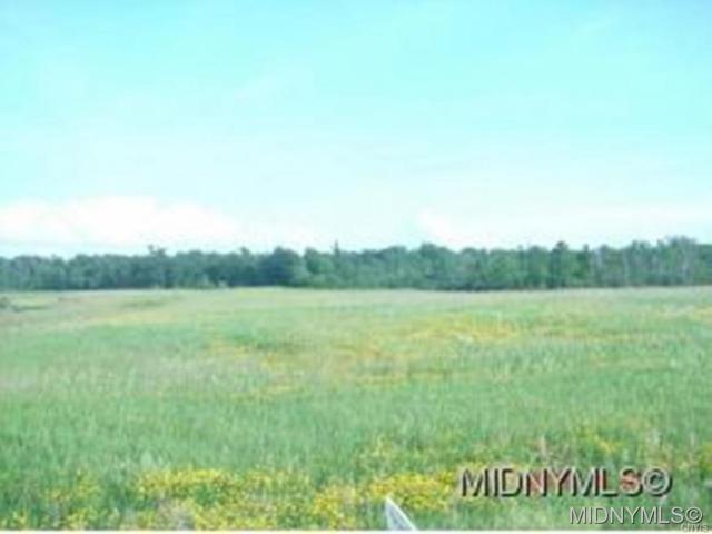 0 Nys Rt 5, Westmoreland, NY 13490 (MLS #1700663) :: Updegraff Group