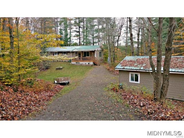 313 Pardee Road, Russia, NY 13431 (MLS #1700885) :: Thousand Islands Realty