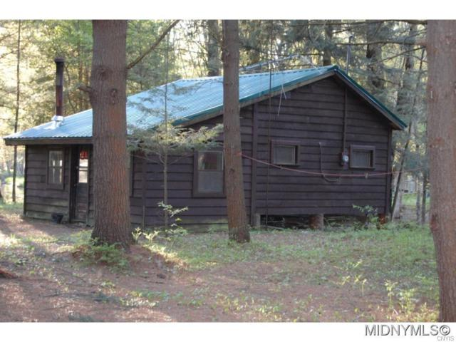 6736 Independence Drive, Watson, NY 13367 (MLS #1701831) :: BridgeView Real Estate Services
