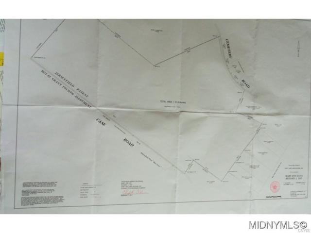 209 Case Road Road, Salisbury, NY 13470 (MLS #1704568) :: The Rich McCarron Team