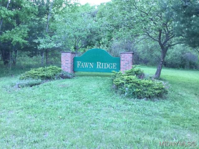 5 Fawn Ridge Drive, Western, NY 13486 (MLS #1802004) :: Thousand Islands Realty