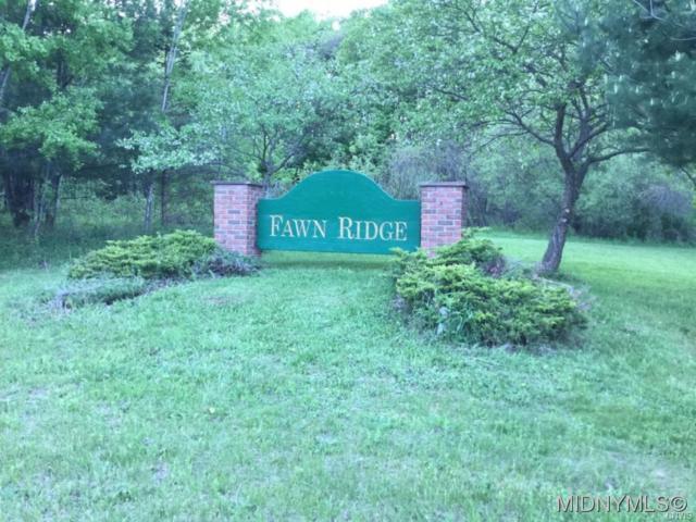 4 Fawn Ridge Drive, Western, NY 13486 (MLS #1802008) :: MyTown Realty
