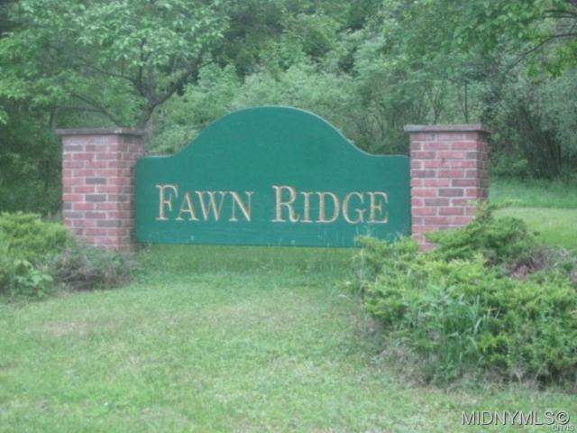 1 Fawn Ridge Drive, Western, NY 13486 (MLS #1802027) :: MyTown Realty