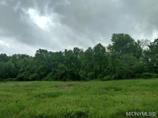 0 Old County Road, Smithfield, NY 99999 (MLS #1802320) :: Thousand Islands Realty