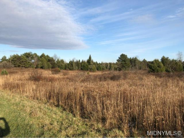 0 Fisher Road, Ohio, NY 13324 (MLS #1802350) :: The CJ Lore Team | RE/MAX Hometown Choice