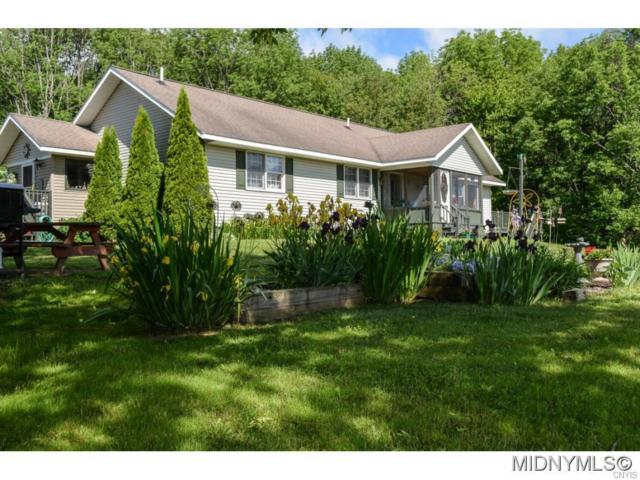 7080 Dorn Spur Road, Ava, NY 13309 (MLS #1802391) :: The CJ Lore Team | RE/MAX Hometown Choice