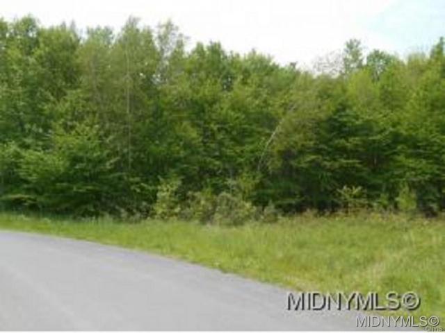 2 Wakefield Lane, Ava, NY 13303 (MLS #1802465) :: Thousand Islands Realty