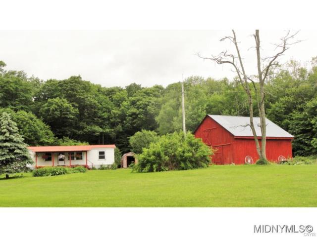 594 Billy Schwerd Road, Hartwick, NY 13348 (MLS #1802538) :: Thousand Islands Realty