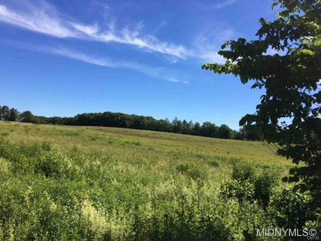 3 State Route 26 & Neff Road, Lewis, NY 13489 (MLS #1802602) :: Thousand Islands Realty