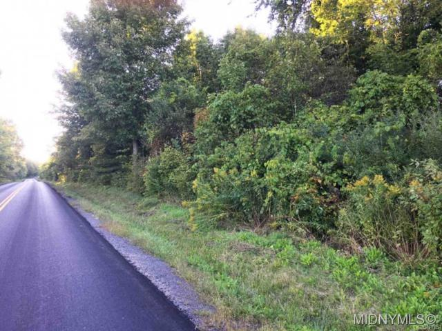 0 State Route 167, Warren, NY 13361 (MLS #1803909) :: Thousand Islands Realty