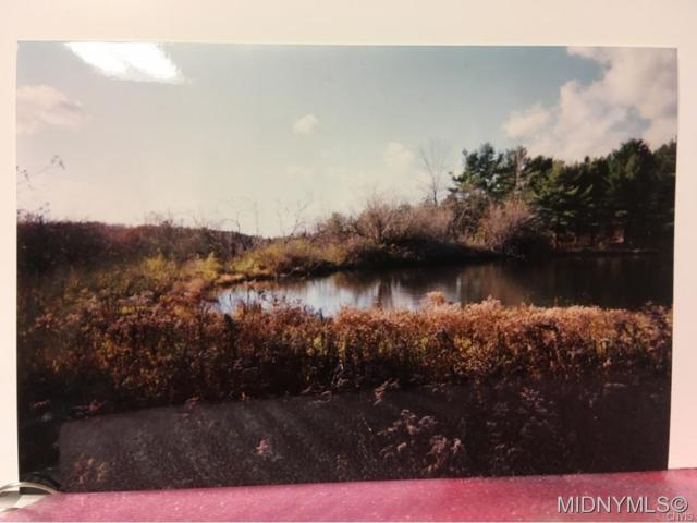 Lot #51 Louis Ridge Road, Herkimer, NY 13340 (MLS #1804242) :: Thousand Islands Realty