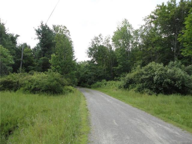 7987 Ellicott Road, Orchard Park, NY 14170 (MLS #B1063694) :: HusVar Properties